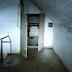 Έρευνα: Δείτε το άγνωστο υπόγειο καταφύγιο στα βασιλικά κτήματα στο Τατόϊ !! Απίστευτες Εικόνες