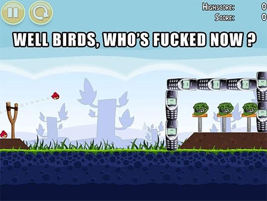 well birds