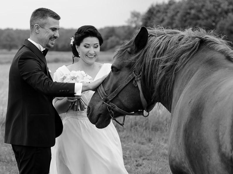 vestuvių fotosesija su žirgais