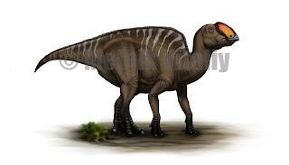 Resultado de imagen de proa dinosaurio