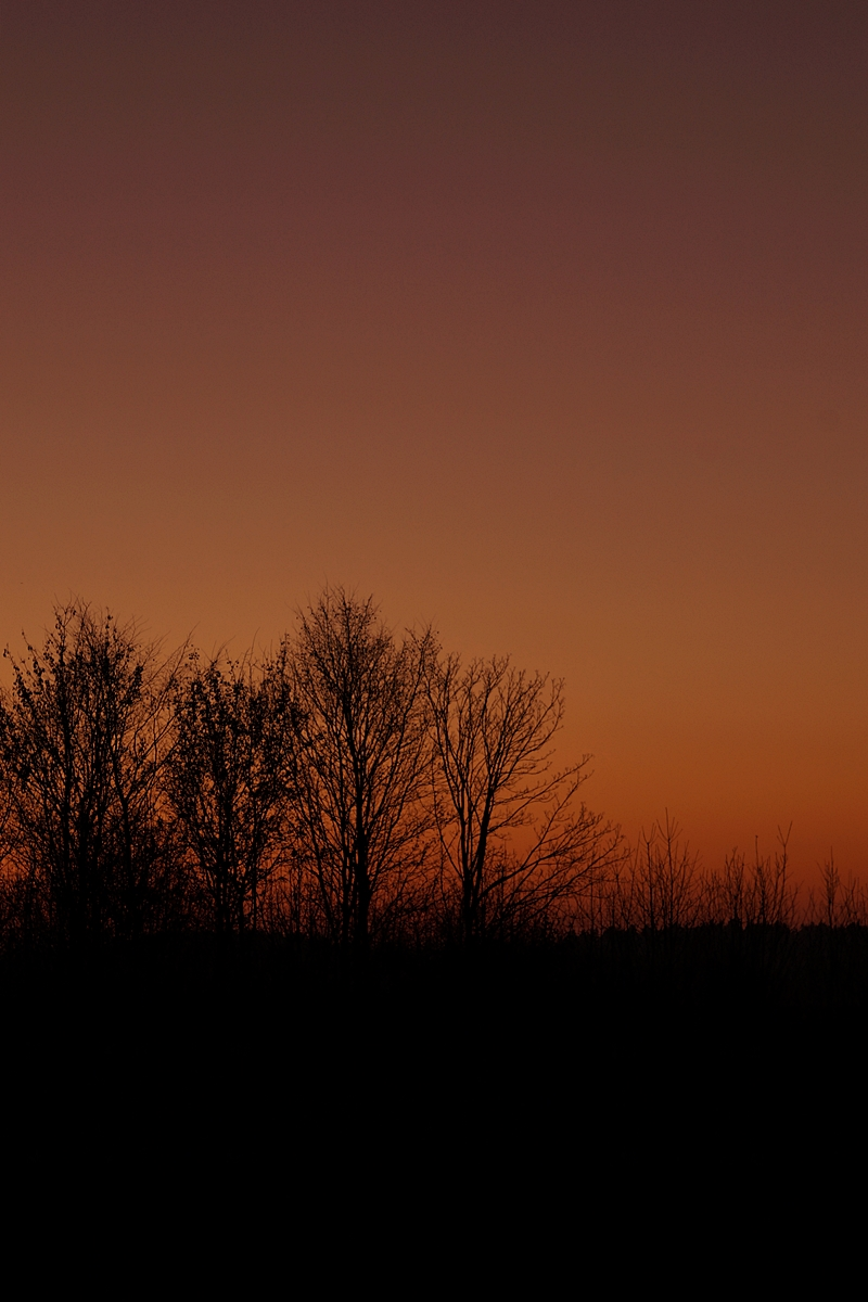 Winter dark evening sun sky // Dunkler Abendhimmel im Winter nach Sonnenuntergang