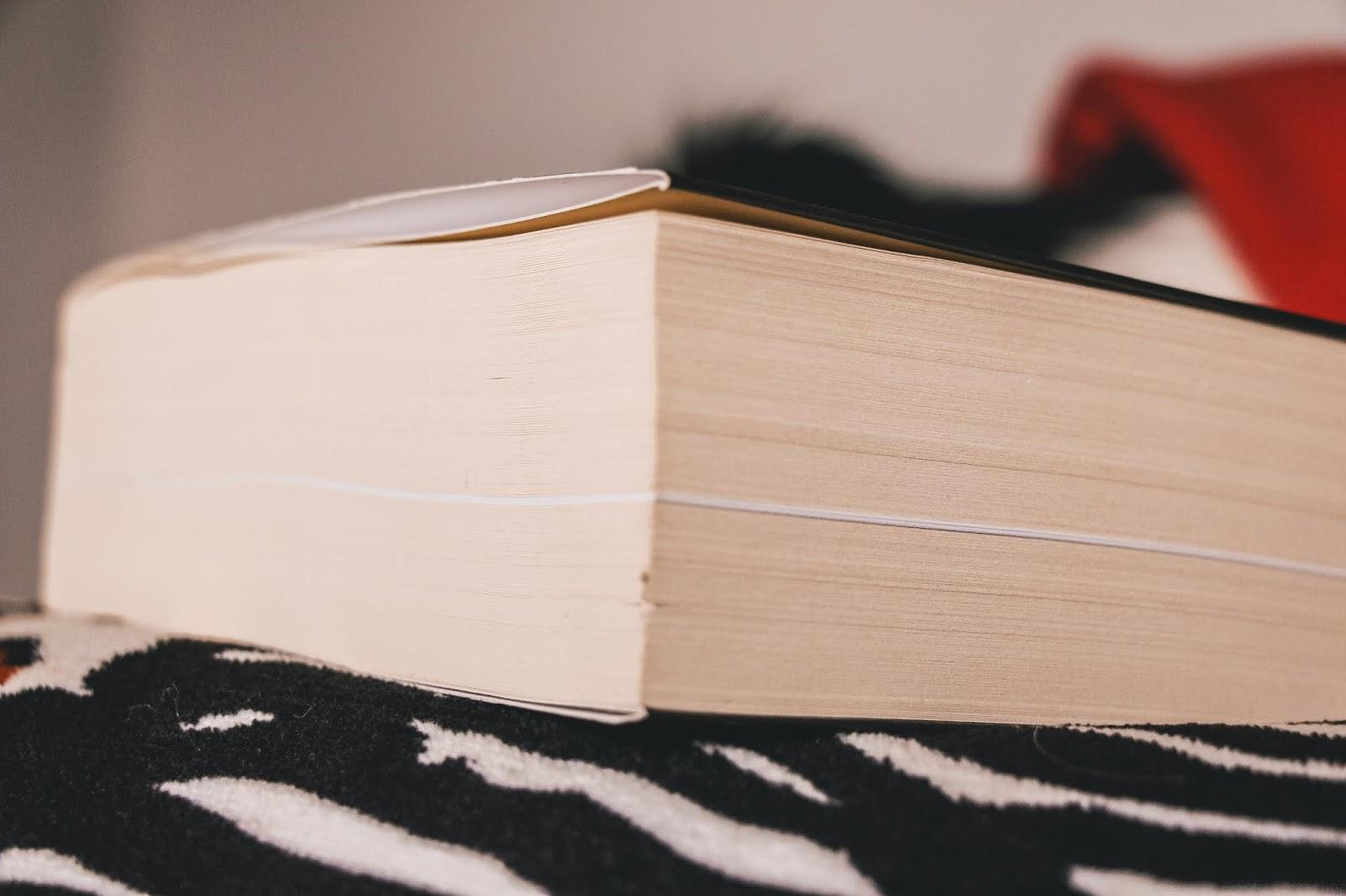 janeiro em livros