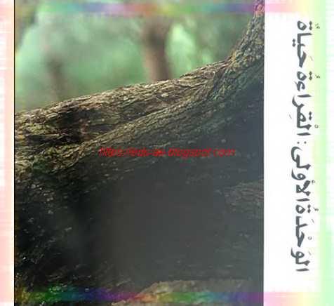 حل كتاب الطالب مادة اللغة العربية للصف الخامس الفصل الدراسي الأول
