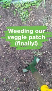 Weeding our Veggie Patch