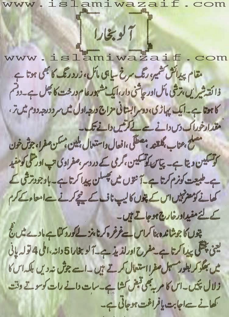 alu bukhara k fawaid in urdu