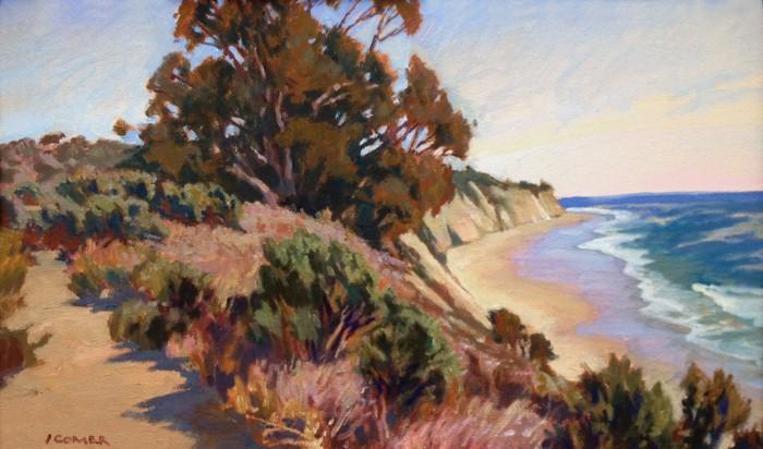 Пейзажи Калифорнии. John Comer 13
