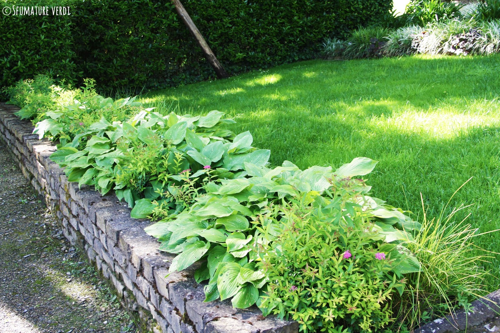 Il giardino di villa bardini un giardino storico nel - Muretti da giardino ...