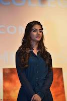 Pooja Hegde ~  Exclusive 042.jpg