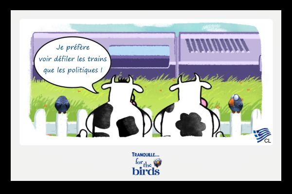 Tranquille for the birds le salon international de l for Salon de l agriculture 2017 billet gratuit