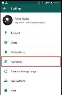 setting whatsapp payment