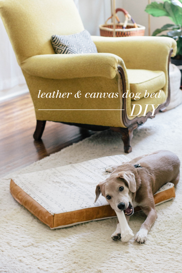 always rooney: Leather and Canvas Dog Bed | DIY