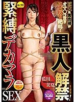 (Chinese-sub) CESD-698 黒人解禁!緊縛デカマラS