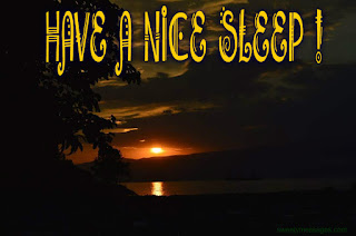good night sleep tight have a nice sleep