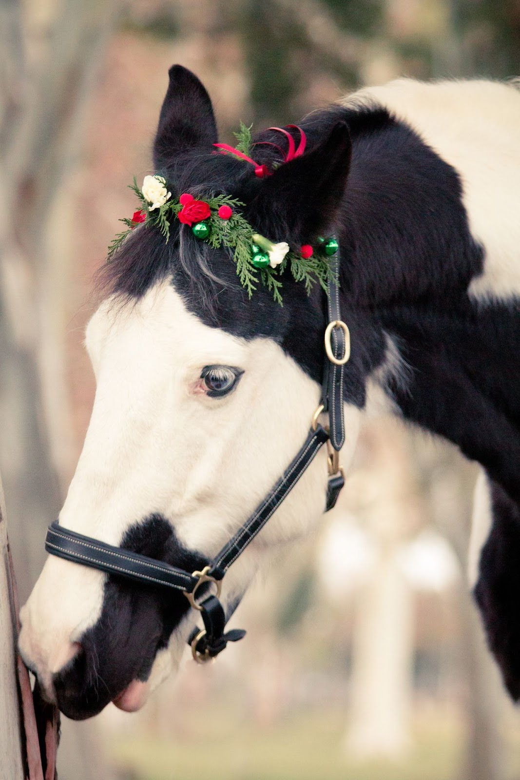 BEAUTIFUL AND CREATIVE CHRISTMAS HORSESHOE ORNAMENTS