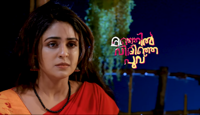 Manjil Virinja Poovu Serial cast and crew