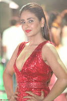 Parul Yadav in Sleeveless Deep Neck Red Gown at IIFA Utsavam Awards March 2017 010.JPG
