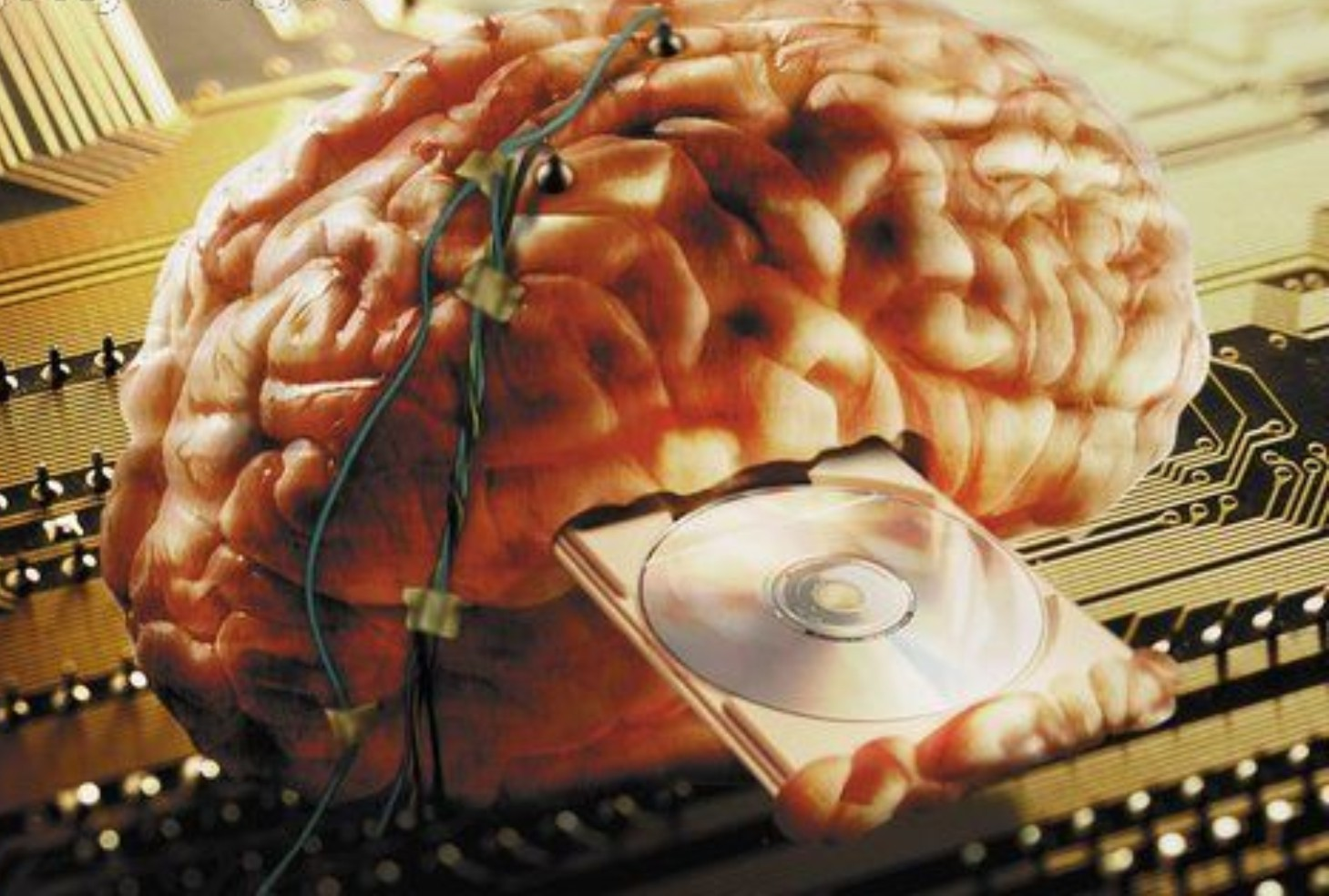 Tipe Orang Yang Mudah Dipengaruhi Dan Di Cuci Otak Gambar Foto