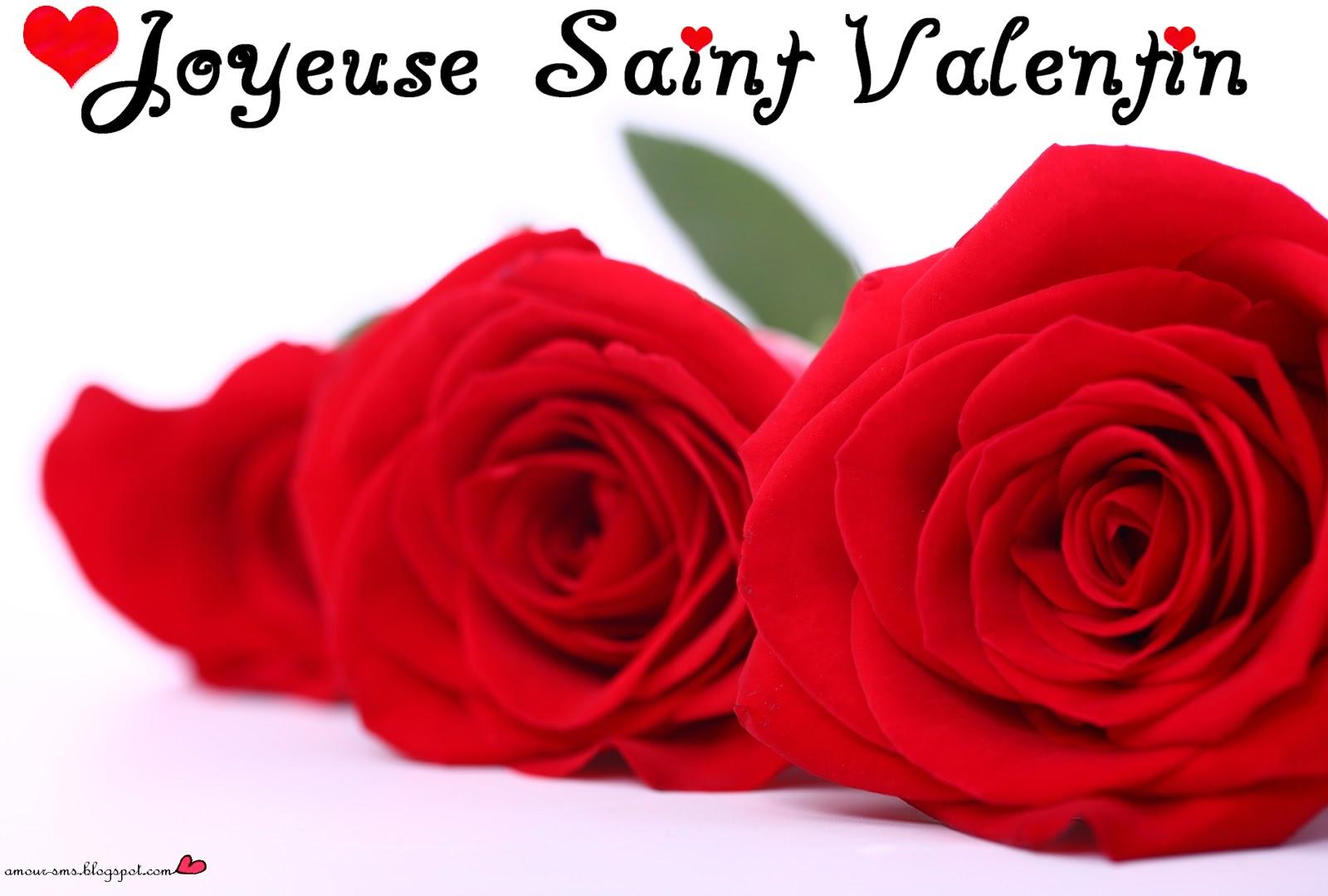 Cartes De Voeux Pour La St Valentin Les Meilleurs Sms D