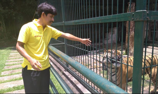 Pagi-Pagi Menyapa Binatang Buas di Kawasan Agrowisata