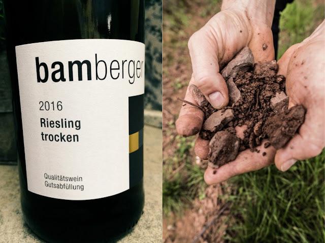 Riesling vom Winzer vom Wein- und Sektgut Bamberger an der Nahe