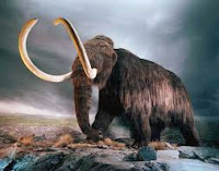 Modelo de mamut lanudo en Canadá