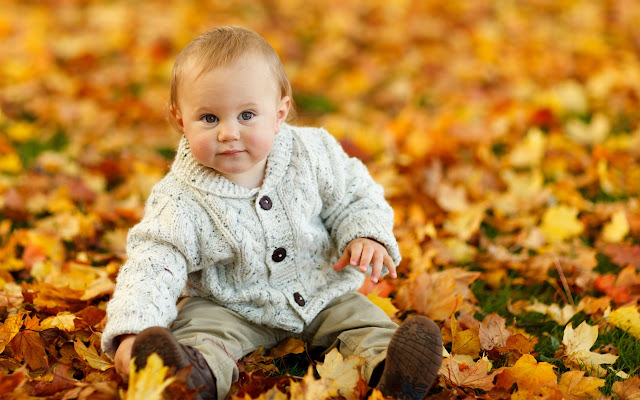 cute baby boy autumn leaves