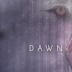 Cover Reveal - Saving Storm by Dawn Sullivan