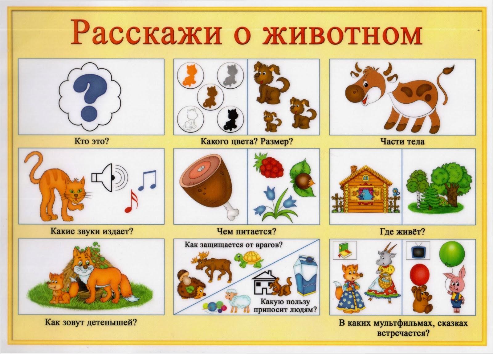 Медвежья семья картинки для детей