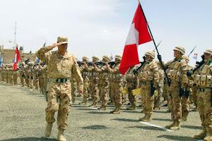 División de Fuerzas Militares