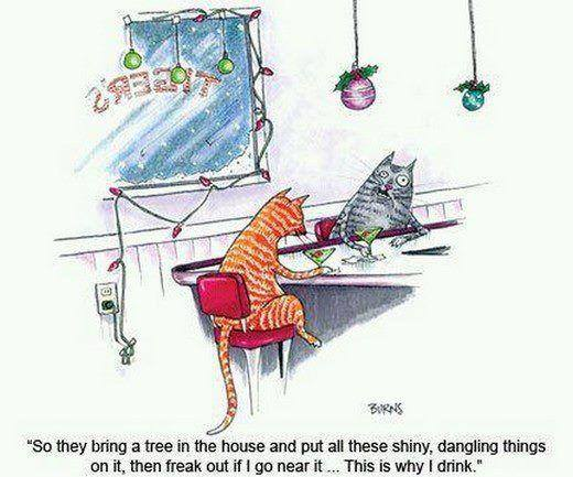 Funny why cats drink alcohol cartoon joke picture