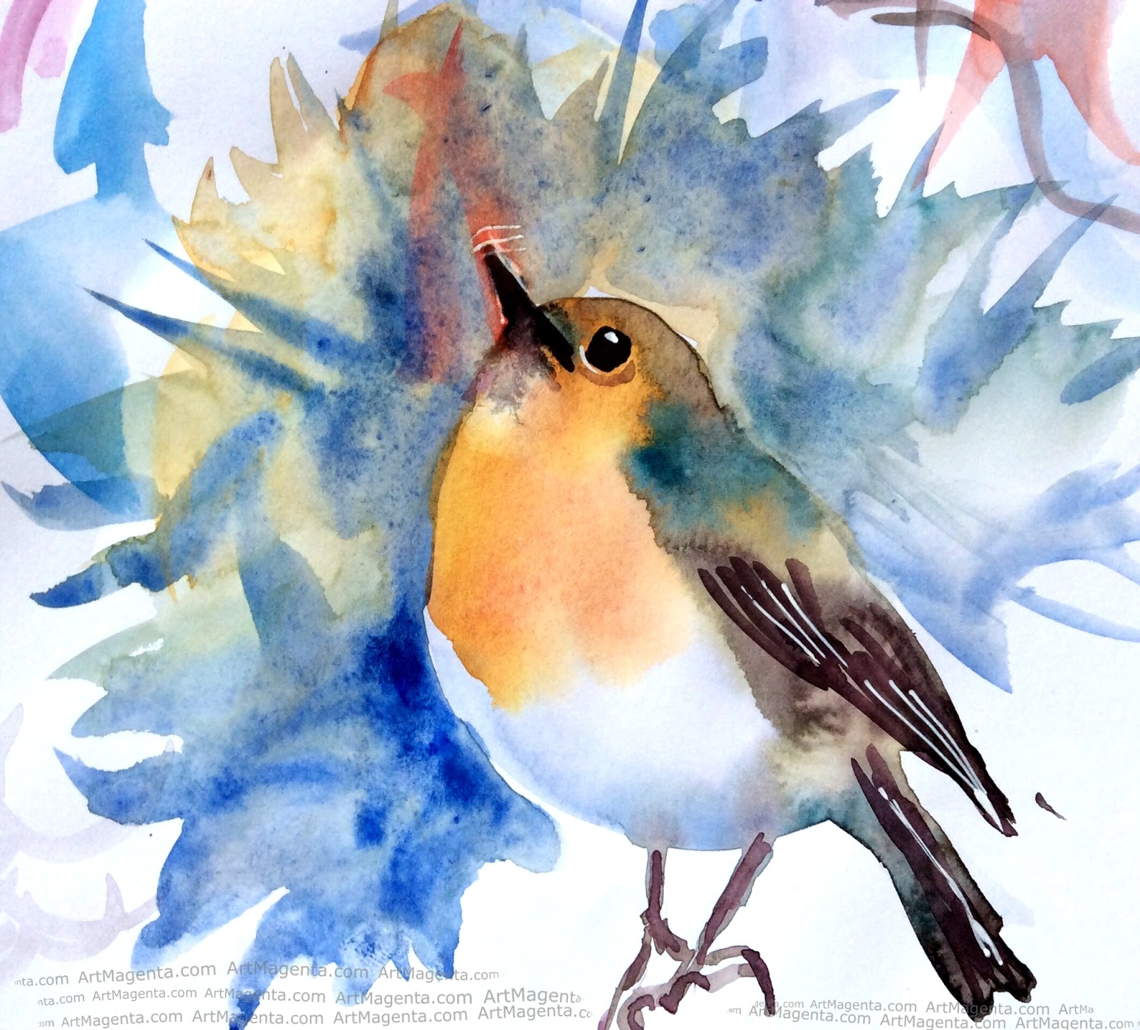 Robin water color sketch painting. Bird art drawing by illustrator Artmagenta
