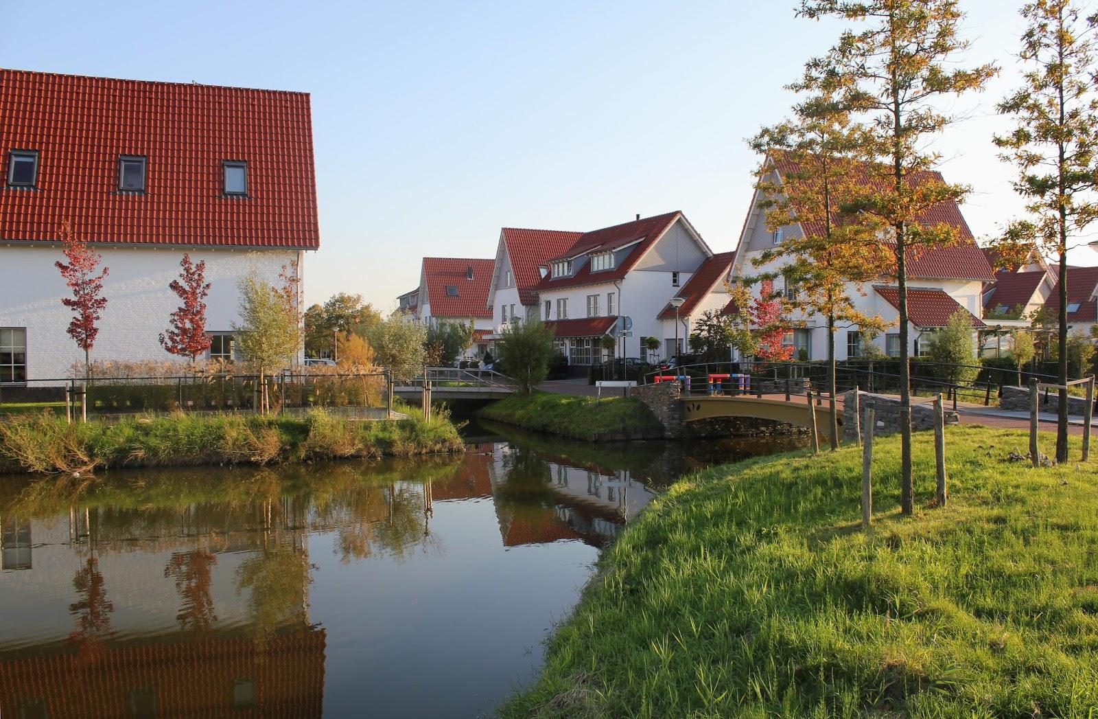Peter Foolen Stads Natuur Maken Making Urban Nature