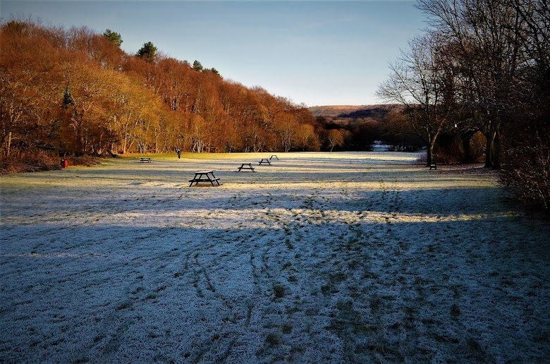 7 Superb Winter Walks in the Land of Oak & Iron (AD)