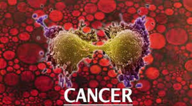 https://2.bp.blogspot.com/-oUh0aTRWbtE/WDkmonSc1YI/AAAAAAAAAI8/nqxIcKQJV-sUbFQStjX1OUaVUPK2ahr5QCLcB/s1600/transferfactor-kanker.gif