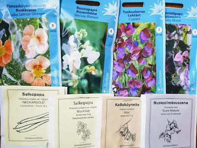 yksivuotiset köynnöskasvit siemenet kasvatus