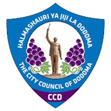 Matokeo ya darasa la saba 2019 Dodoma - PSLE Results 2019 for Dodoma Region