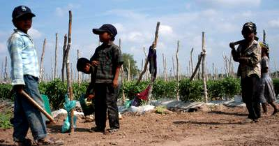 Foto de niños trabajando a muy corta edad