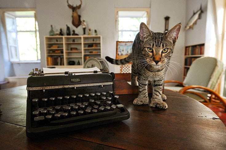 Ernest Hemingway, Key West, and Six Toed Cats: Literature Comes to the Florida Keys | CosmosMariners.com