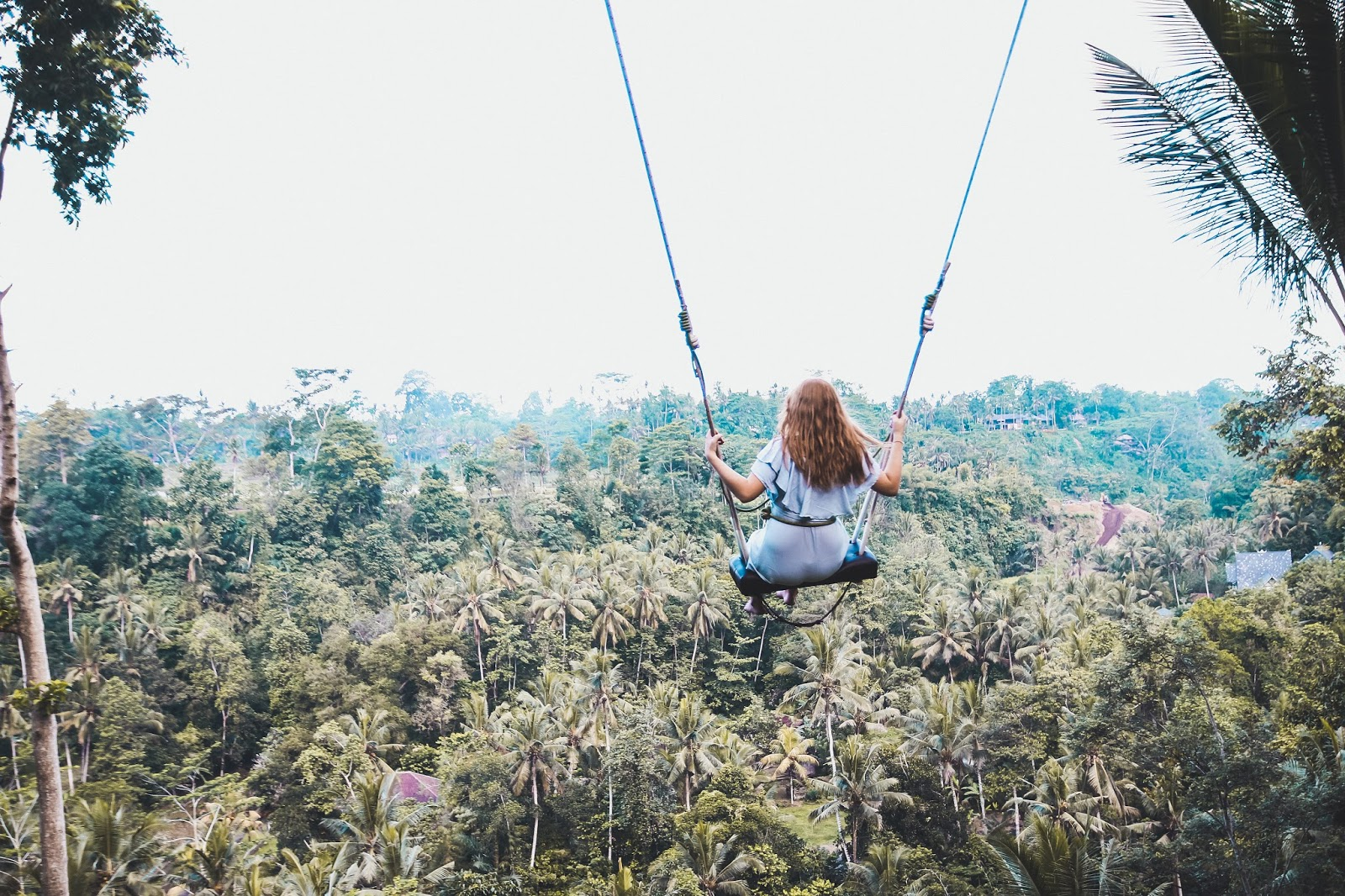 why the bali jungle swing should be on your list