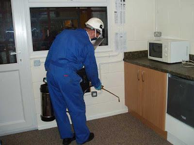 Pest Control Service Cost In Sunbury