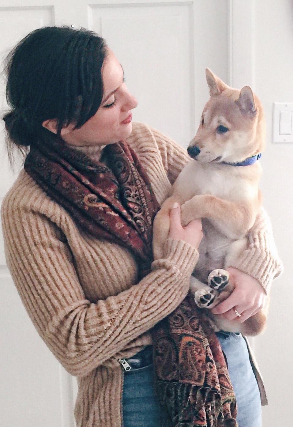 new puppy, Shiba Inu, shiba inu puppy, choosing a dog, choosing a puppy, fur baby, dog-friendly miami, Miami dogs, Kenji the Shiba