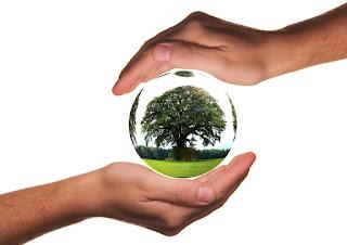 Aller vers un comportement écologique