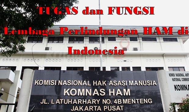 Lembaga Perlindungan HAM di Indonesia (Tugas Dan Fungsi)