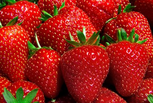 Stroberi, Buah Cantik dengan Berbagai Manfaat Kesehatan