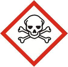 makalah bahan berbahaya dan beracun