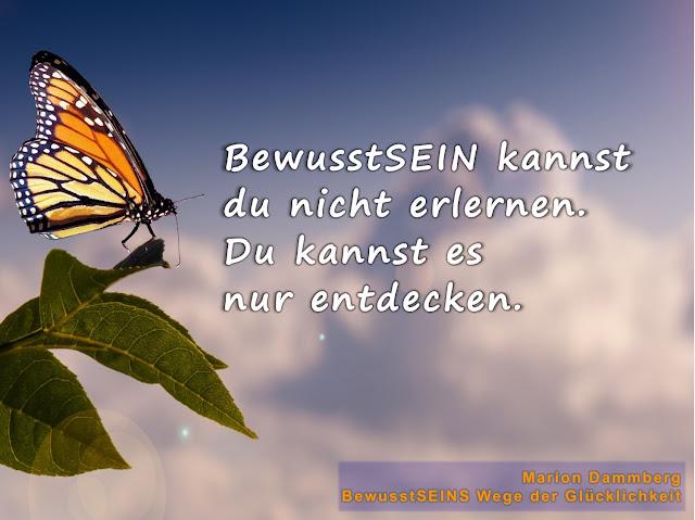 Bewusstseins Wege der Glücklichkeit, Marion Dammberg, zum inneren und äußeren Reichtum, Bewusstsein, Freude, Freiheit, Liebe, Licht des Lebens, Coaching