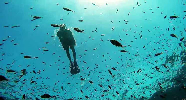 Pesona Taman Laut Bunaken Manado, Sulawesi Utara