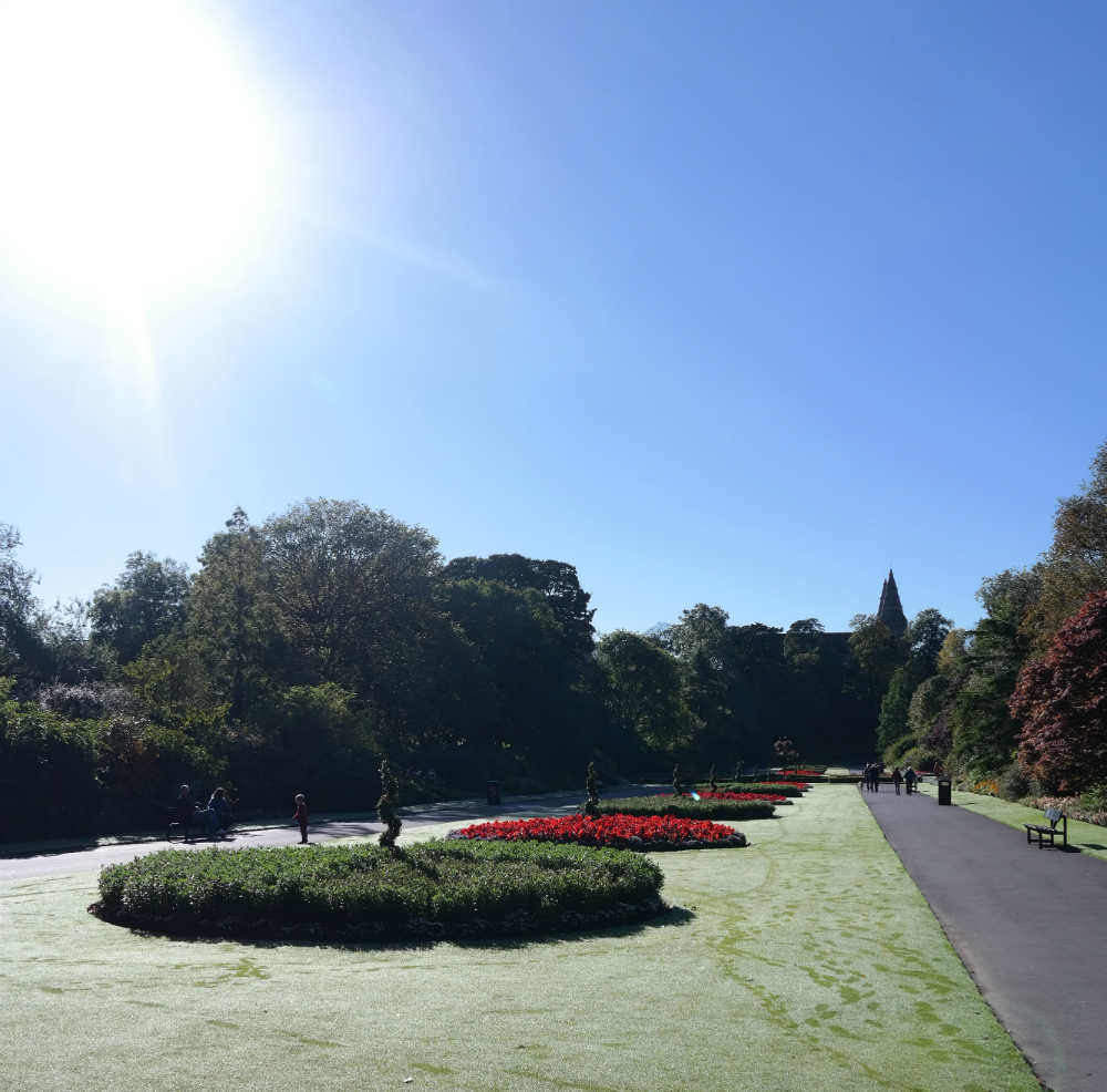 Seaton Park in Autumn