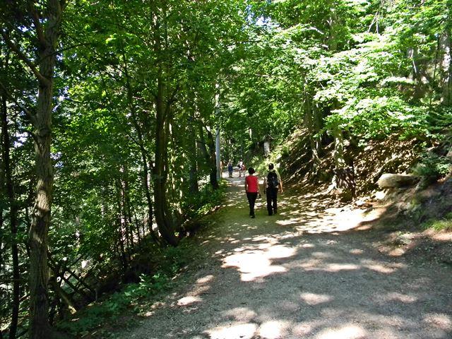 okolice Międzygórza, turyści, las, góry