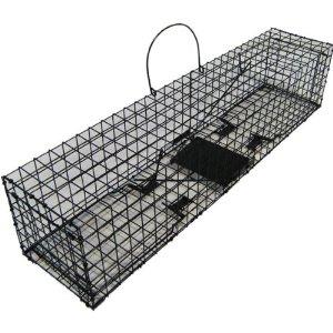 meine kleine welt katzen vom grundst ck vertreiben. Black Bedroom Furniture Sets. Home Design Ideas